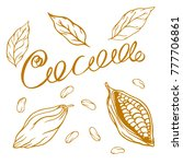 cocoa logo with lettering hand... | Shutterstock .eps vector #777706861