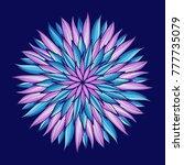 mandala. colorful round... | Shutterstock . vector #777735079