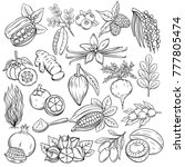 set hand drawn superfood icons. ... | Shutterstock .eps vector #777805474