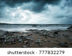 garbage on beach  environmental ... | Shutterstock . vector #777832279