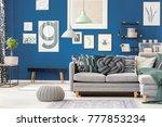 elegant interior with gray knit ... | Shutterstock . vector #777853234