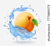 apricot realistic in water... | Shutterstock .eps vector #777889375