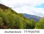 scottish highlands with trees... | Shutterstock . vector #777920755