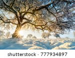 Winter Rural Landscape With The ...