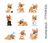Stock vector set of cartoon corgi funny little dog in different actions walking wondering sleeping growling 777939331