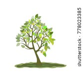 tree silhouette  illustration . | Shutterstock . vector #778023385