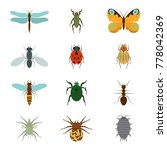 icons set insects flat  ... | Shutterstock . vector #778042369