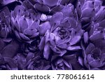 Ultraviolet Abstract Backgroun...