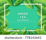 green tea leaves vector nature... | Shutterstock .eps vector #778142641