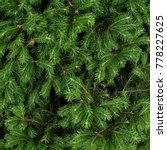 green christmas tree background   Shutterstock . vector #778227625