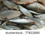 Small photo of background full of small edible freshwater fish, alburnus