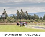 Stock photo horse racing in new zealand wingatui race day 778239319
