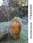 A Large Garden Urn In Winter...