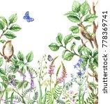 watercolor painting.  hand... | Shutterstock . vector #778369741