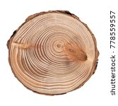 cross section of tree trunk... | Shutterstock . vector #778559557