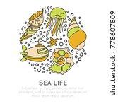 sealife vector sketched cartoon ... | Shutterstock .eps vector #778607809