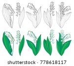 vector set with outline lily of ... | Shutterstock .eps vector #778618117
