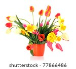 pink tulips on white background | Shutterstock . vector #77866486