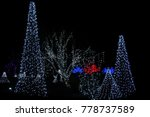 trees outlined with lights for