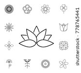 abstract type of lotus flowers... | Shutterstock .eps vector #778765441