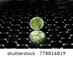 ten baht coin  set on thai baht....   Shutterstock . vector #778816819