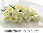 bunch of arum lily on white... | Shutterstock . vector #778973374