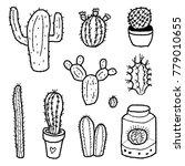 cactus species collection  ... | Shutterstock .eps vector #779010655