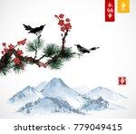 two birds on sakura and pine... | Shutterstock .eps vector #779049415