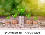tree growing on coins stack... | Shutterstock . vector #779084305