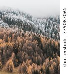 winter morning in switzerland | Shutterstock . vector #779087065