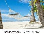 hammock between palms on the... | Shutterstock . vector #779103769