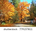 down at the campground   fall... | Shutterstock . vector #779157811