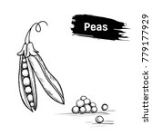 green peas  black and white... | Shutterstock . vector #779177929