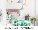 stone flowerpots with ferns in... | Shutterstock . vector #779181667