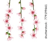 spring bloom branch with pink... | Shutterstock .eps vector #779199661