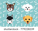 cute face dog set.chihuahua  ... | Shutterstock .eps vector #779228239
