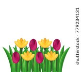 beautiful flowers cultivated... | Shutterstock .eps vector #779234131