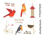 birdwatching  bird feeding icon ... | Shutterstock .eps vector #779297059
