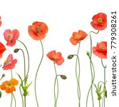 seamless pattern with red poppy ... | Shutterstock . vector #779308261
