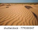 a beatiful desert landscape... | Shutterstock . vector #779330347