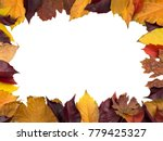 Frame Made Of Autumn Leaves An...