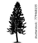 tree silhouettes on white... | Shutterstock .eps vector #779468155