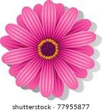 Beautiful Pink Gerber Daisy