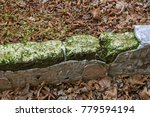 old overgrown ruined stone... | Shutterstock . vector #779594194