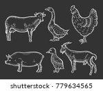 farm animal set. fresh organic... | Shutterstock .eps vector #779634565