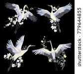 vector of illustrations bird... | Shutterstock .eps vector #779644855