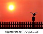 Silhouette Of Bird On Mailbox...