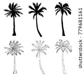 palm tree silhouette icons on...   Shutterstock . vector #779681161