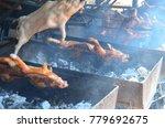 barbecued suckling pig ... | Shutterstock . vector #779692675