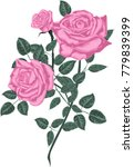 pink  roses    vector | Shutterstock .eps vector #779839399